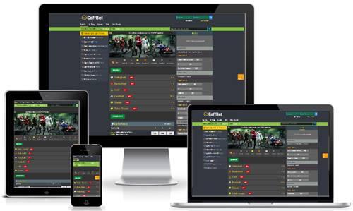 sportsbook_software