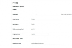 Profile Editor | Admin can edit info of players & Agents